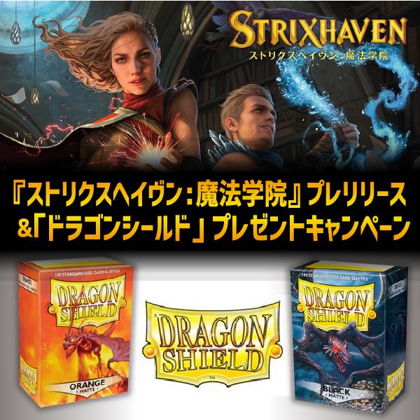 ストリクスヘイヴン&ドラゴンシールド